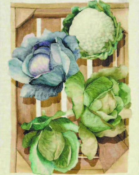 Cabbages Italian Linen Tea Towel