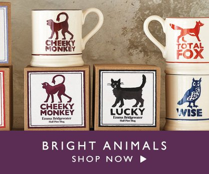 Shop Now Bright Animals