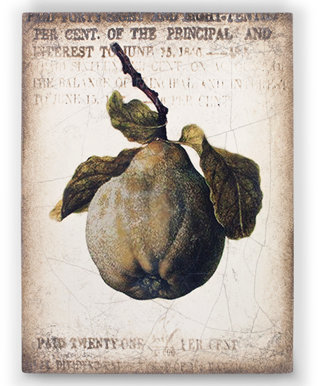 Sid Dickens Ancient Pear Memory Block