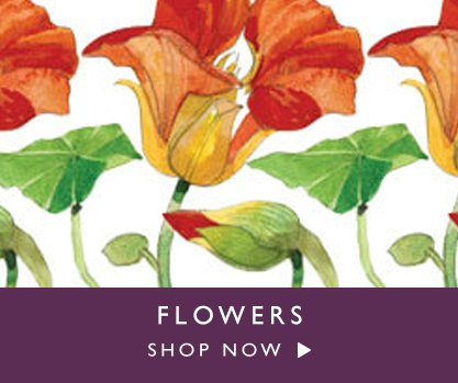Shop Now Flowers