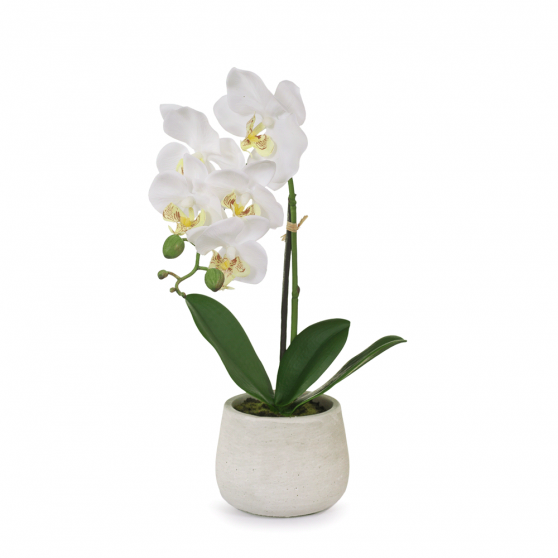 Artificial Flowers Orchid Phalaenopsis in Pot (White) - 38cm