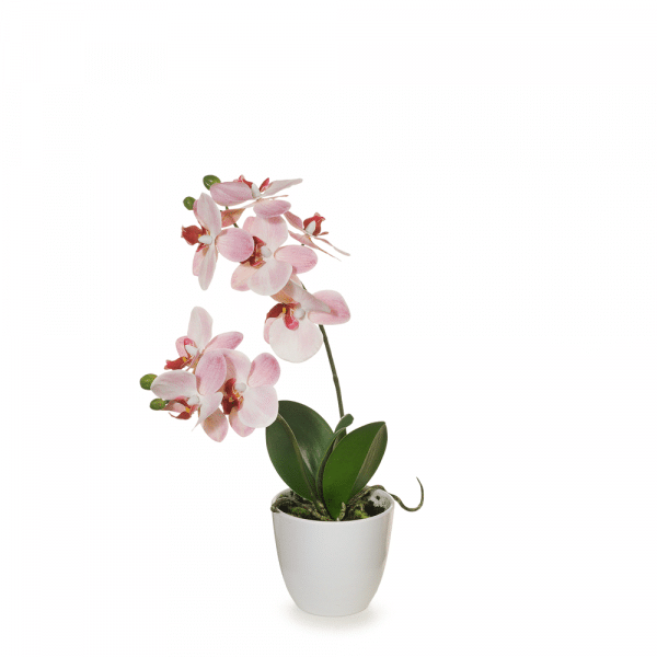 Artificial Flowers Orchid Phalaenopsis in Pot (Pink) - 36cm