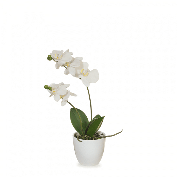 Artificial Flowers Orchid Phalaenopsis in Pot (White) - 36cm
