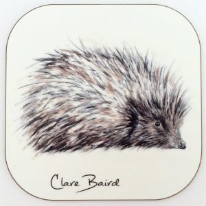 Hedgehog Coaster by Clare Baird