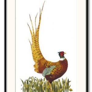'Ruffled Pheasant' - Signed, Limited Edition Print by Mary Ann Rogers
