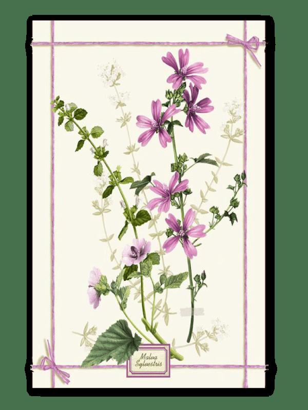 Fragrance Malva - Linen Tea Towel - Made in Italy