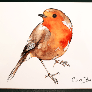 Robin Placemat - by Clare Baird