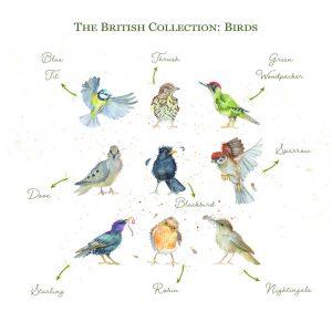 Kate of Kensington British Collection Birds Large - Breeds