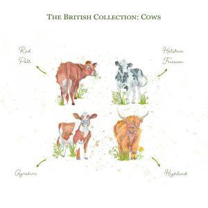 Kate of Kensington British Collection Cows Medium - Breeds
